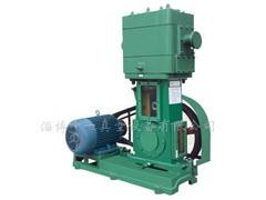 WLW系列无油立式往复真空泵